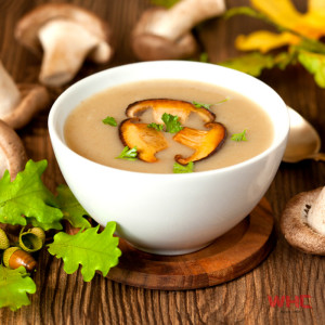 WHC-Savoury-SoupBase